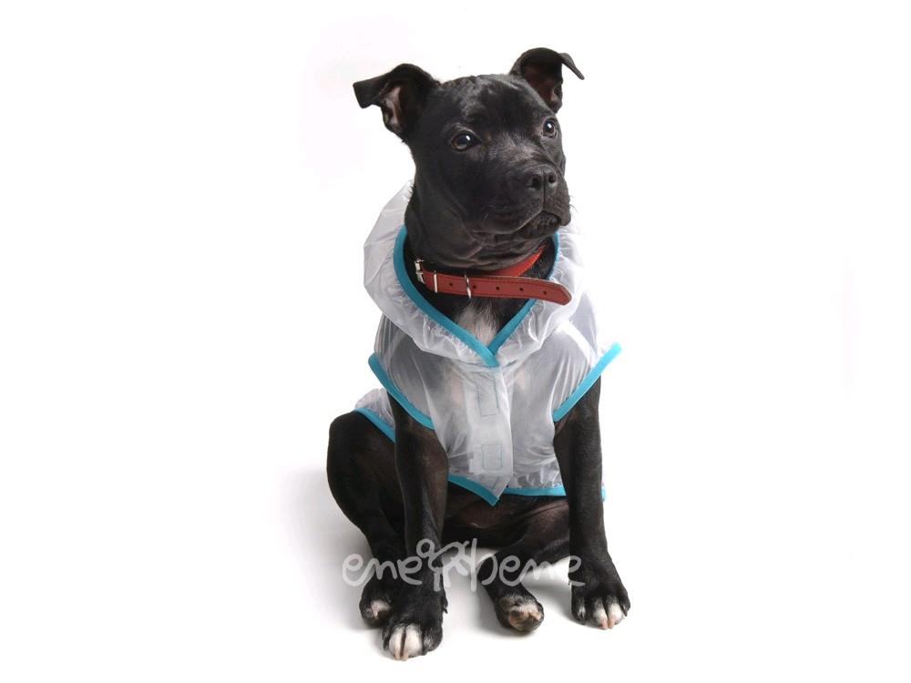Ene Bene obleček - pláštěnka pro psa Tami modrý lem S