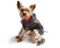 Obleček - pláštěnka pro psa Tedy černo červená s COOLMAX podšívkou
