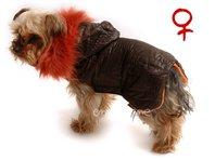 Obleček- bunda pro fenky Mia hnědo oranžová  s kapucí a kožešinou